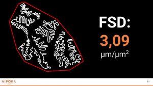 FMC Presentation (3)