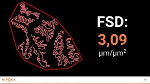 FMC Presentation (4)